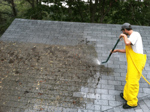Algae or mold not only can destroy your roof's appearance, they can also cause your shingles to 'cup' underneath, decreasing their lifespan. Steve James The Stain Shop in Linden